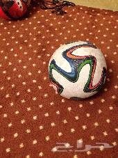 كرة كاس العالم
