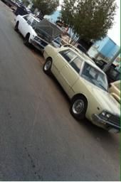 200ال ضبعه 1981 للبيع