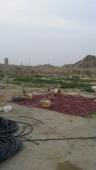 مزرعة للبيع مساحة كبيرة بصك شرعي