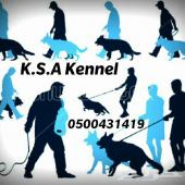 مزرعة  كلاب ( K.S.A Kennel )