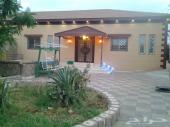 استراحة للبيع بالقرب من جامعة الطائف الجديدة في حي وادي العرج الحنوبي تبعد عن الجامعة اقل من 500متر