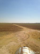 مشروع زراعي للايجار
