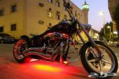 Harley Davidson هارلى ديفيدسون
