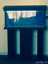 حوض سمك جديييد