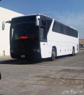 باص مرسيدس للأايجار 50 راكب