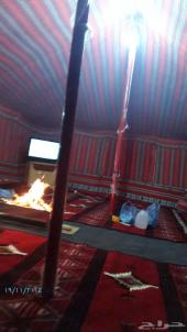 مخيم الشاذليه للإيجار