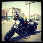 للبيع هارلي نايت رود   Harley-Davidson NIGHT ROD 2012