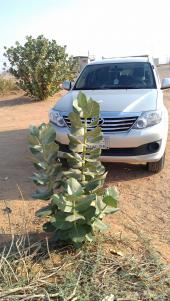 Toyota Fortuner 2012 Silver