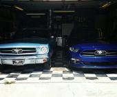 للبيع قطع موستنج 2005-2010 V8 تشليح