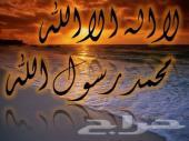 سائق شيول وبكلين يمني 0508977922
