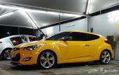 فيلوستر اصفر للبيع 2013