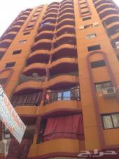 شقة للبيع في فيصل شارع العشرين في مصر