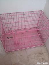 قفص قطط للبيع .