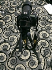كاميرا نيكون d7000 الغنيه عن التعريف مع العدسه الاصليه معاها عدسة 50mm 1 8 حقت البورتريه   ترايبود