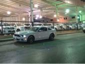 للبيع موستنق GT   2014