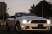 فورد موستينغ كشف 2013 اللون ابيض بطاقة جمركية  V6