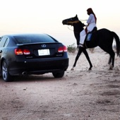 حصان اسود شعبي