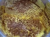عسل طلحه للبيع مضمون 100