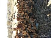 حطب سمر صافي مشروط جروم كبار