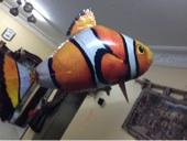السمكة الطائره تخفيض