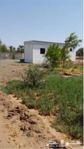 مزرعه في المدينه المنوره في منطقه الزبائر للبيع عاجل