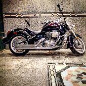 بوليفارد 800cc